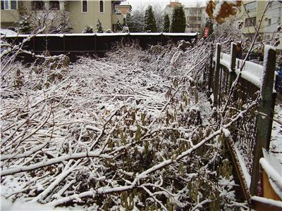 Teren intravilan, 500 mp, zona Nord